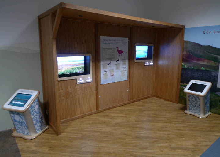 tralee bay wetlands centre interactive bird hide